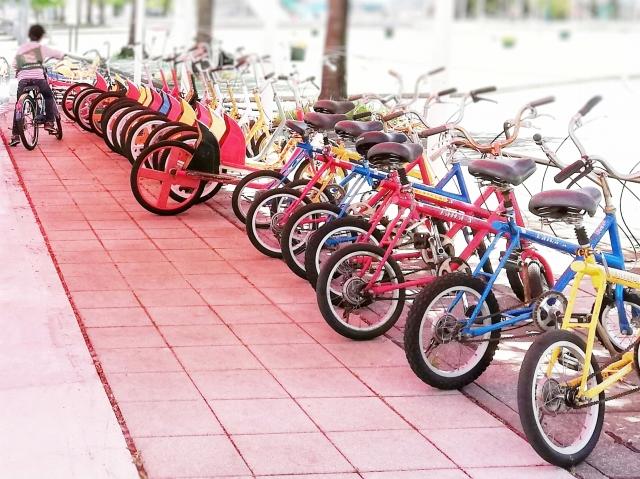 自転車が楽しいお散歩コース