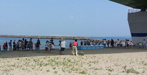 岡田浦漁業協同組合